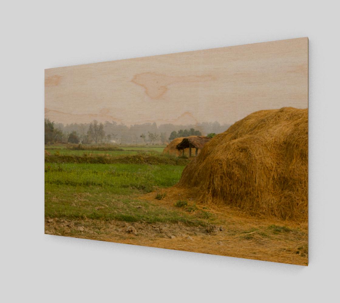 Farmland Scenery - Nepal preview