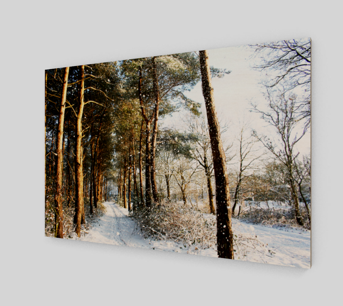 Forest Snow Scene Wood Print preview #2