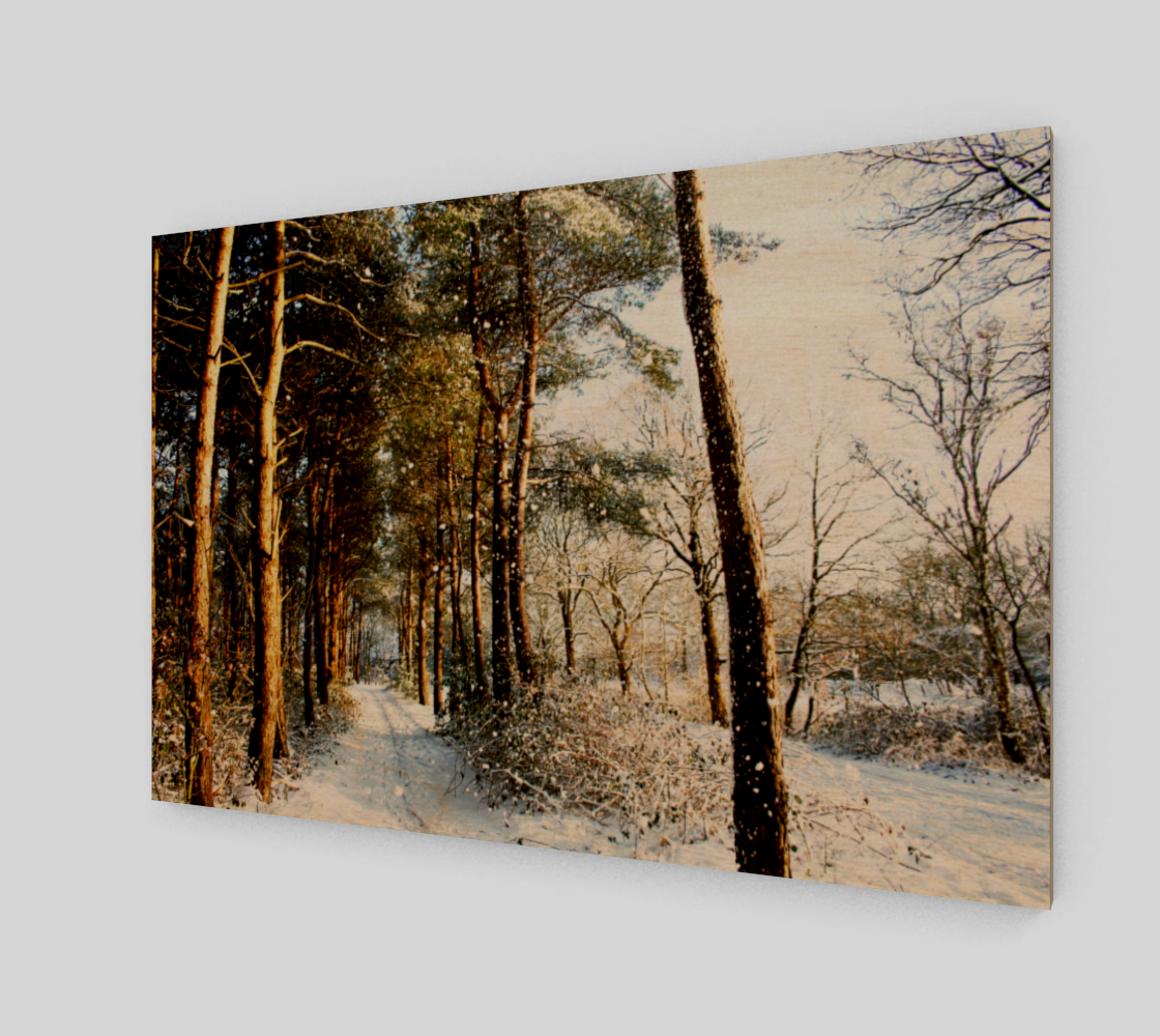 Forest Snow Scene Wood Print preview #1