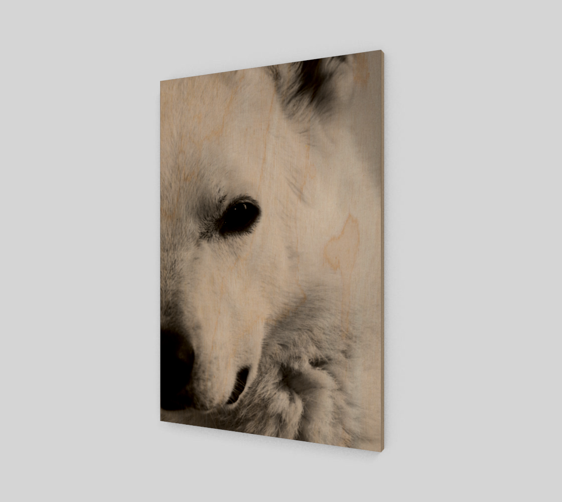 White German Shepherd Poster Print preview