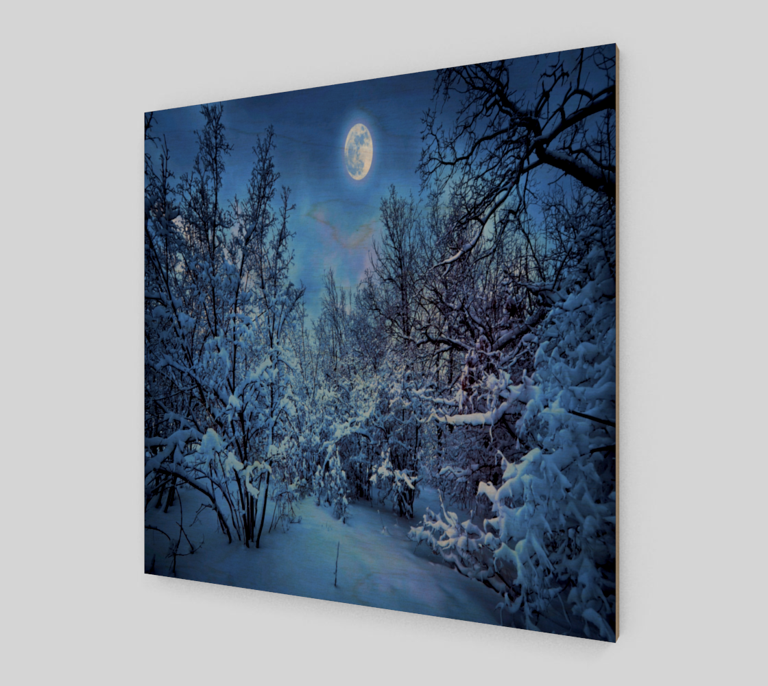 Snowworld preview