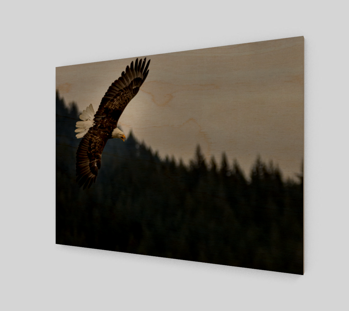 Eagle Approaching preview