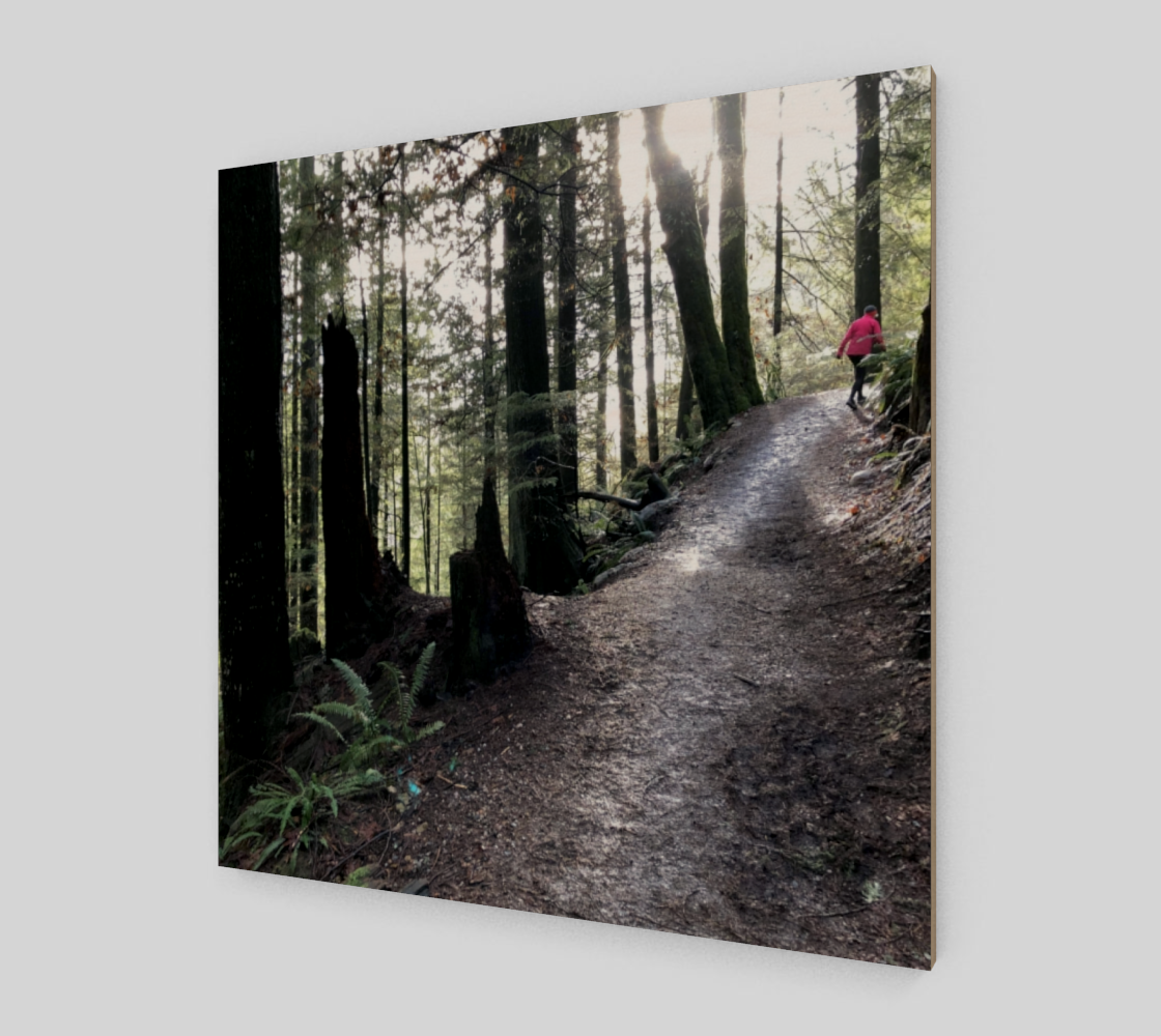 baden powell trail preview #2