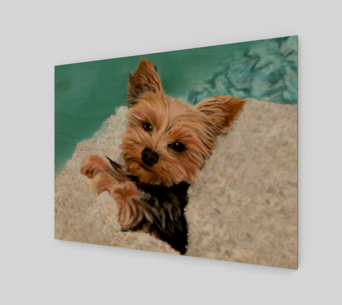 Adorable Yorkie preview