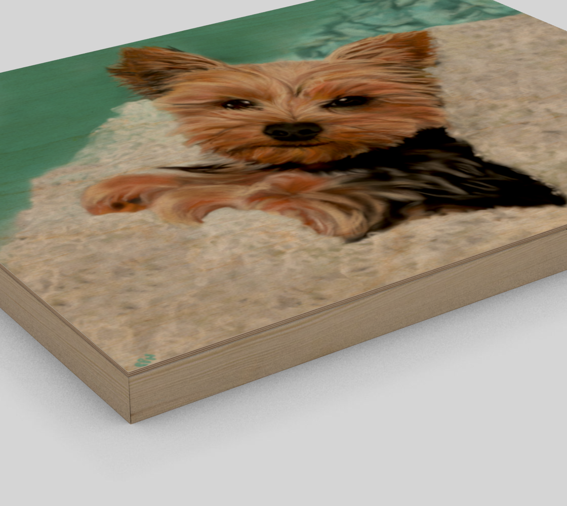 Adorable Yorkie Dog preview #3