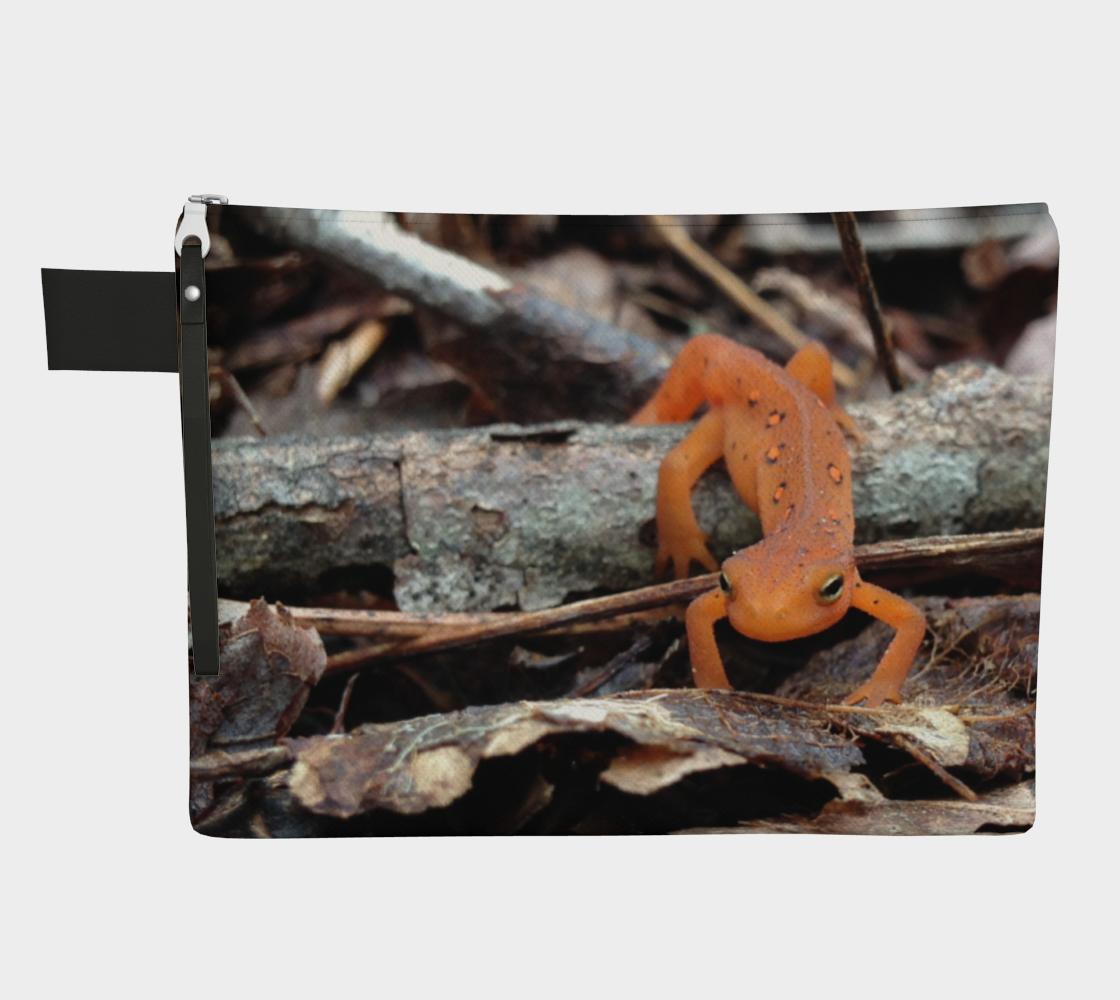 Aperçu de cute newt