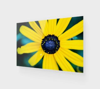 Summer is Coming Wall Art preview