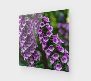 Aperçu de Purple Foxgloves Wall Art