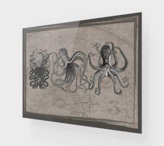 Aperçu de 3 Octopi