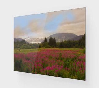 Alaskan Fireweed preview