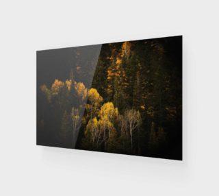 Aperçu de Autumn Trees