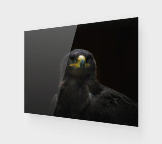 Steppe Eagle preview