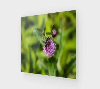 Aperçu de A Bee on a Purple Flower Wood Print