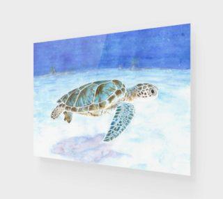 Sea turtle underwater preview
