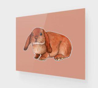 Aperçu de Red rabbit ram