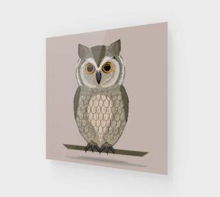Aperçu de Gorgeous Owl Illustration