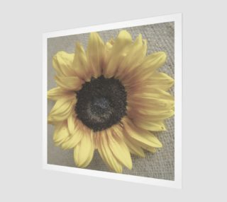 Soft Sunflower preview
