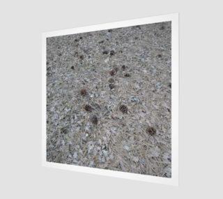 Natures Detritus Wall Art preview