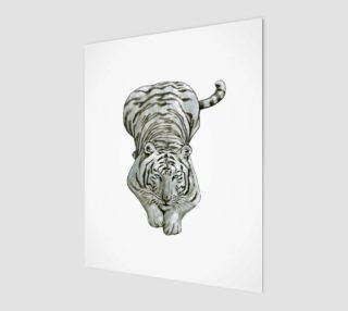 Zabu White Tiger preview