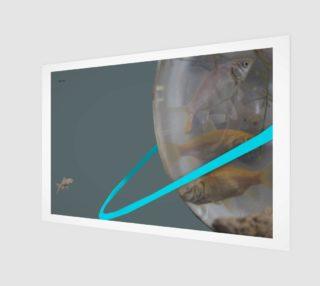 Aperçu de fish reentry