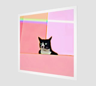 Bubblegum & Cat preview