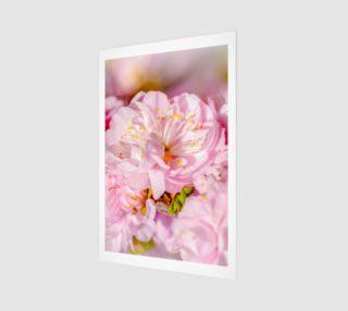 Cherry Flower Wedding - Wall Art Poster 4 preview