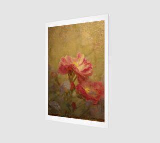 Aperçu de my favorite rose