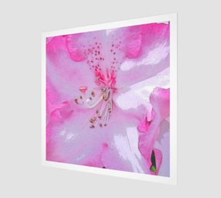 Pink Rhododendron preview