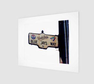 Aperçu de 8x10 Blue jays