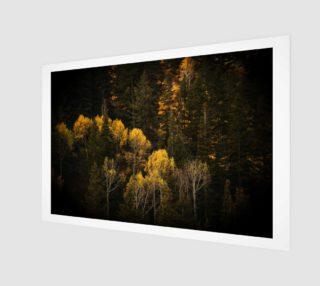 Autumn Trees preview