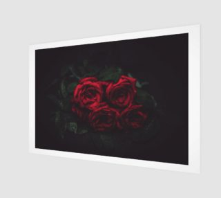 Roses preview