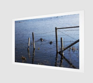Duck Pond Wall Art preview