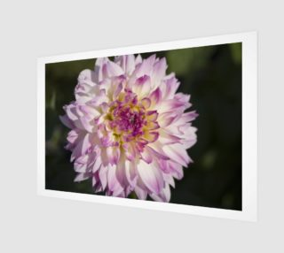 Pink Dahlia Wall Art preview