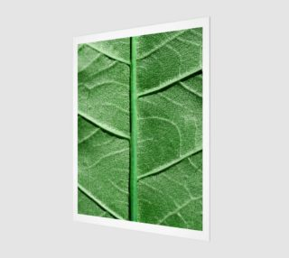 Veined Green Leaf preview