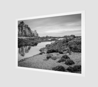 Big Beach Ucluelet preview