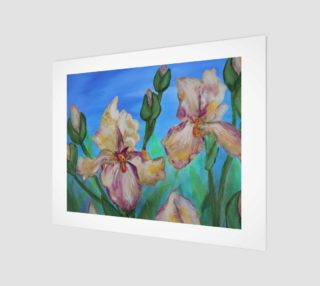 Variegated Irises 14 x 11 preview