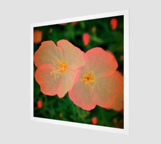 Tangerine Flowers  aperçu