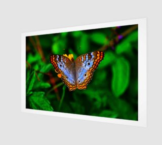 Butterfly Print preview