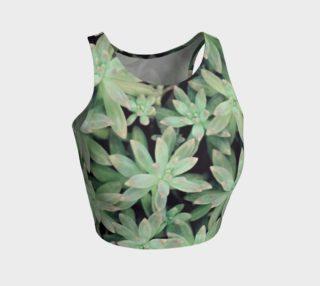 Aperçu de Succulent