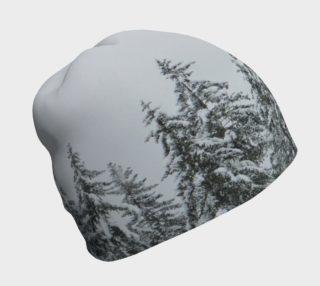 Aperçu de First Snow
