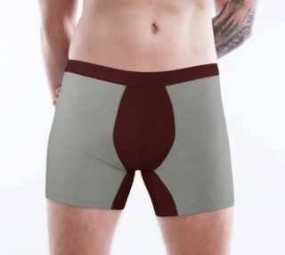 The Bar Boxer Briefs preview