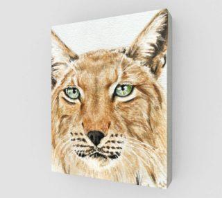 Apollo Siberian Lynx by Zrana preview