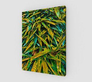 Aperçu de Bamboo leaves
