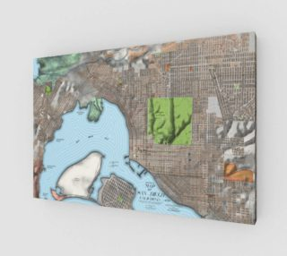 Historical Map of San Diego California preview