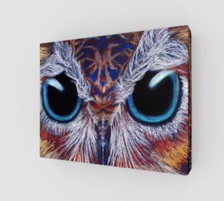 Aperçu de Owl Eyes Sm