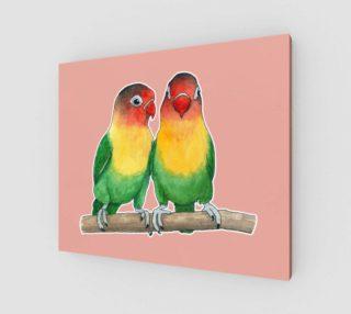 Fischer's lovebirds preview