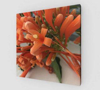 YMCA Orange Flower/Flor preview