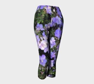 Aperçu de Lilac flowers