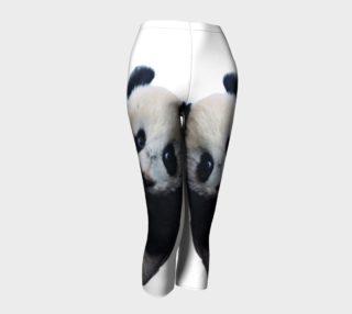 Panda  preview