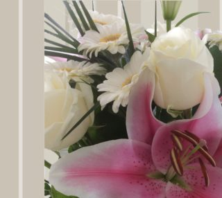 Star Lily on Stripes preview
